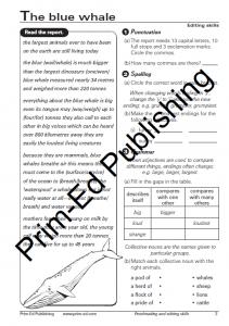 Freebie Friday - Proofreading and Editing Skills - Prim-Ed ...